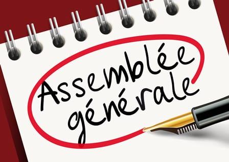 Assemblée générale du 6 juin 2020 en visioconférence